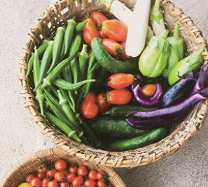 夏に収穫された自然栽培の野菜。