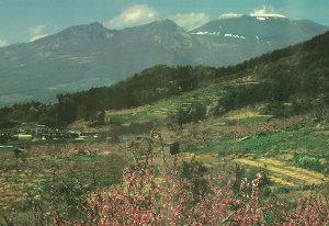 昭和 30 年頃に桃源郷と呼ばれて た景色